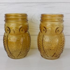 Owl Shaped Glass Mason Jars Set of 2 No Lids
